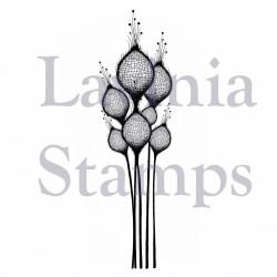 Fairy thistles LAV378 stamp...