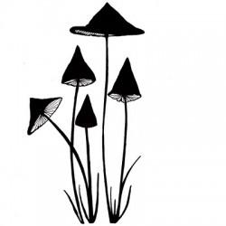 Slender mushrooms miniature...